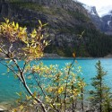 Raod Trip 2: Banff National Park