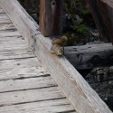 2008-10-Banff-18.JPG