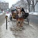 2008_01-Quebec-23.JPG