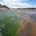 2008-10-Yellowstone-14.JPG