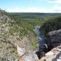 2008-10-Yellowstone-15.JPG